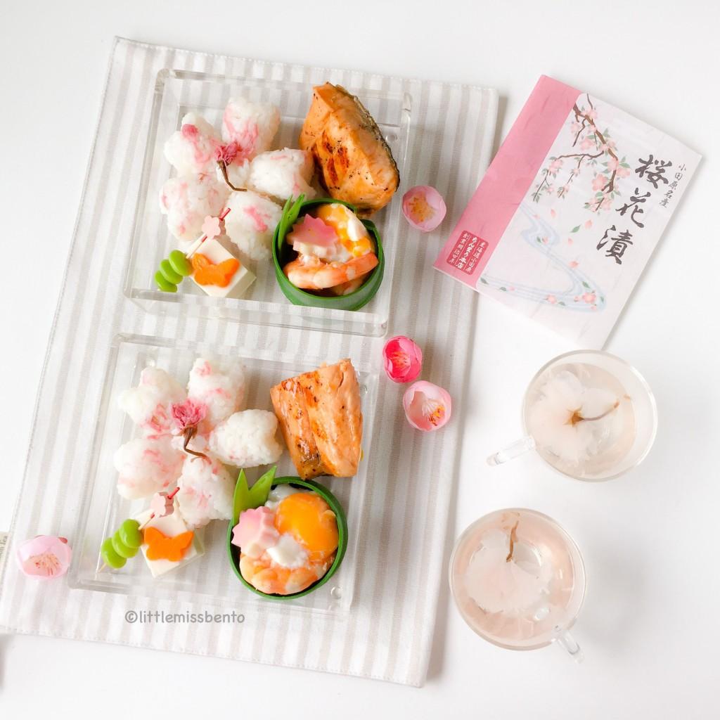 Sakura Onigiri Bento