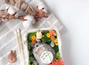 Sleeping Totoro Bento (1)