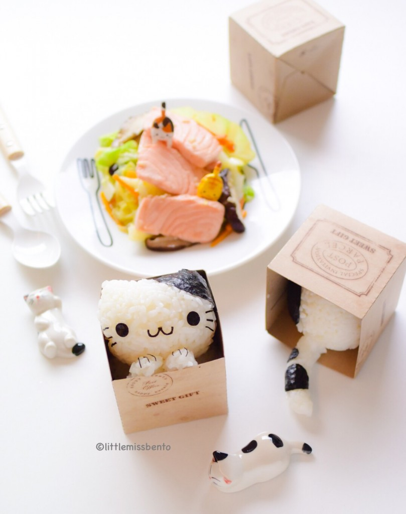 Cat in Box Onigiri kawaii (1)